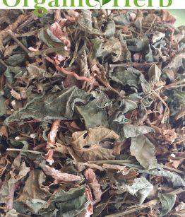 ANAMU-GUINEA-HENWEED-Organic-Herb