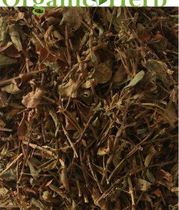 Medina-Jamaican-Herb