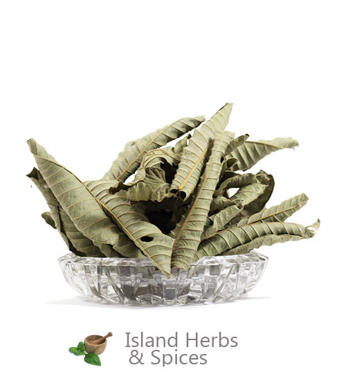 Herbs For Kidney Stones