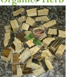jamaican-bitter-wood