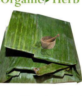 plantain-leaf
