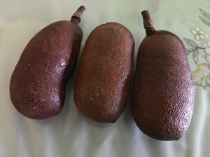 Health Benefits of Hymenaea courbaril (Stinking Toe)