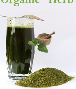 Papaya_Leaf_Health_Benefits